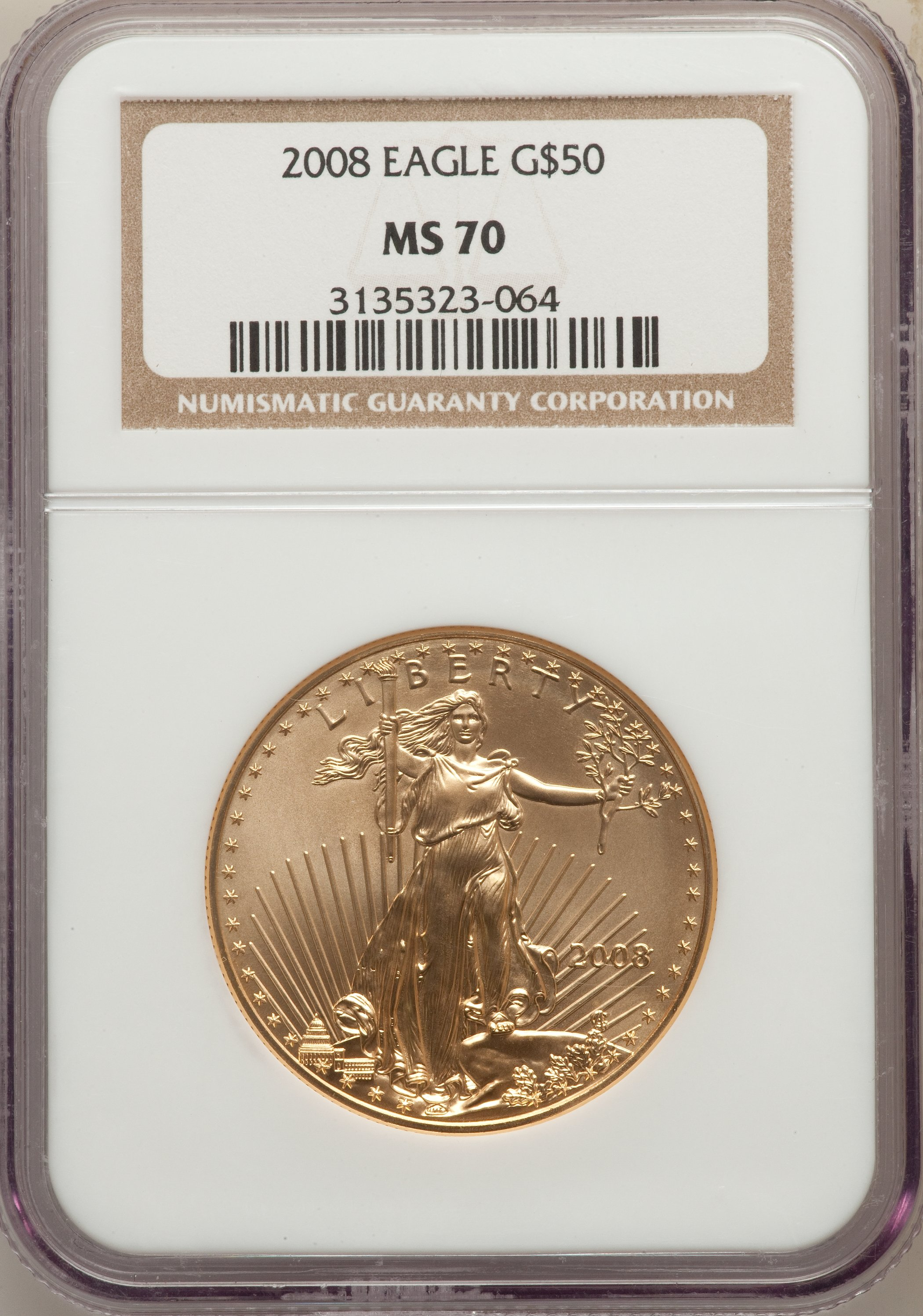 sample image for 2008 Gold Eagle $50  MS
