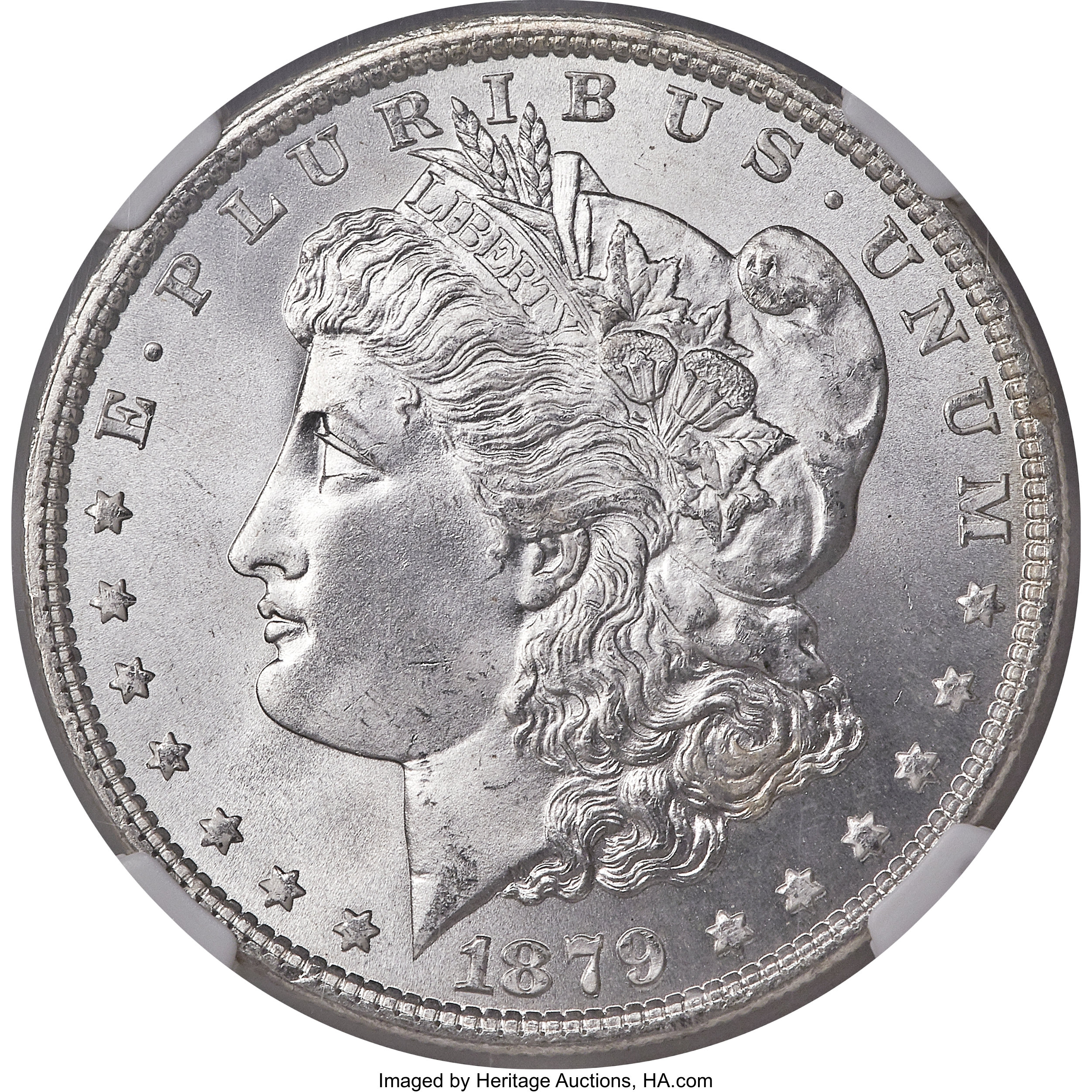 sample image for 1879 $1  MS