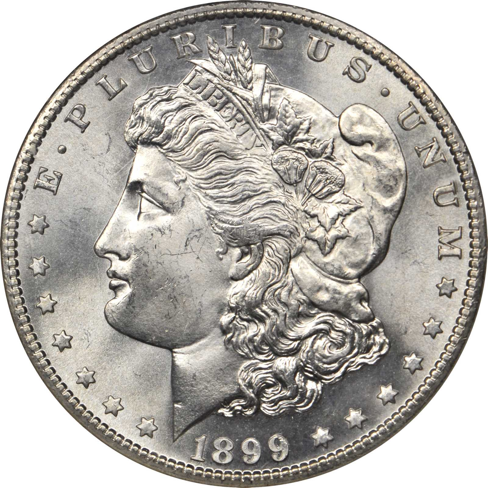 sample image for 1899-S $1  MS VAM-7, Doubled Date
