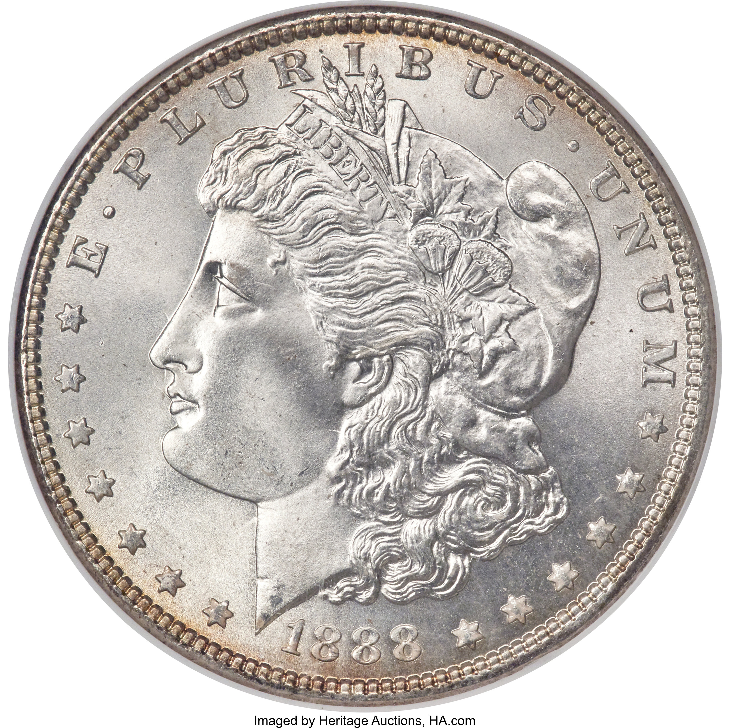 sample image for 1888 $1  MS