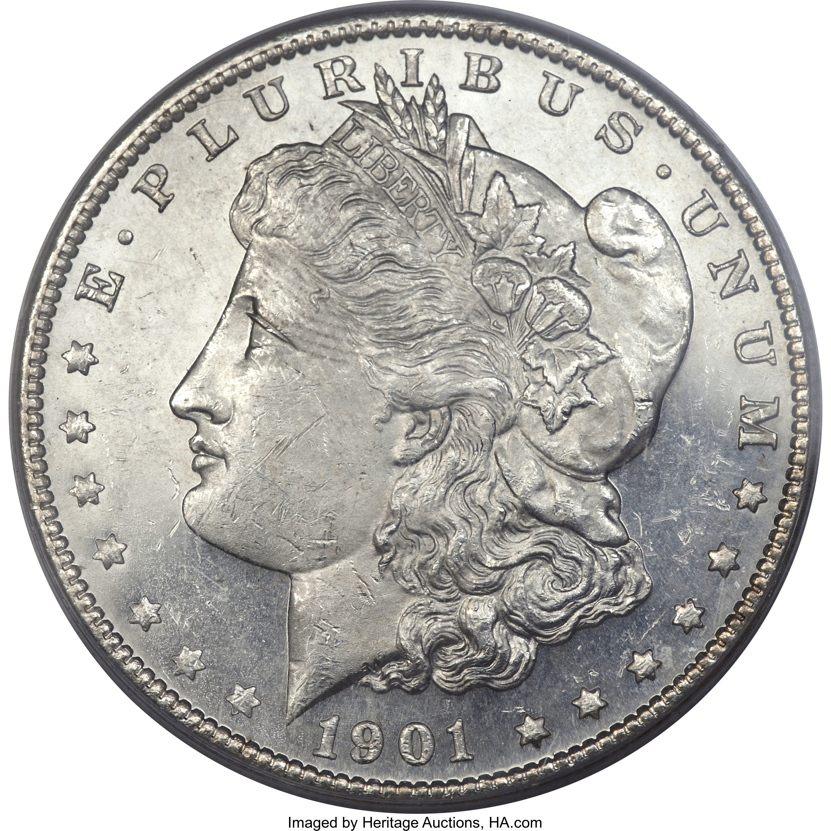 sample image for 1901-S $1  MS DMPL