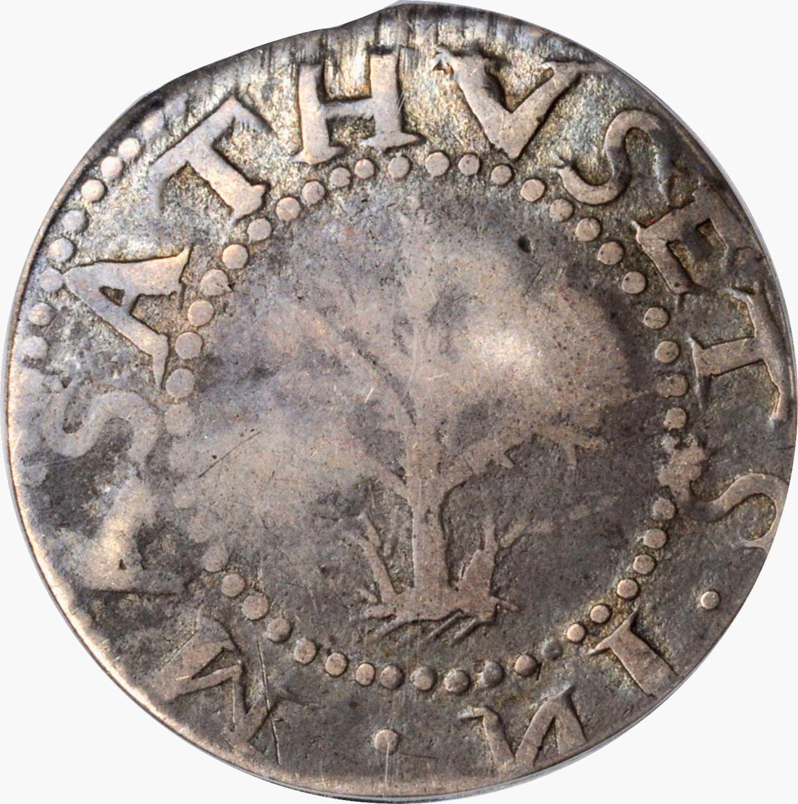 sample image for 1652 Oak Tree 1s