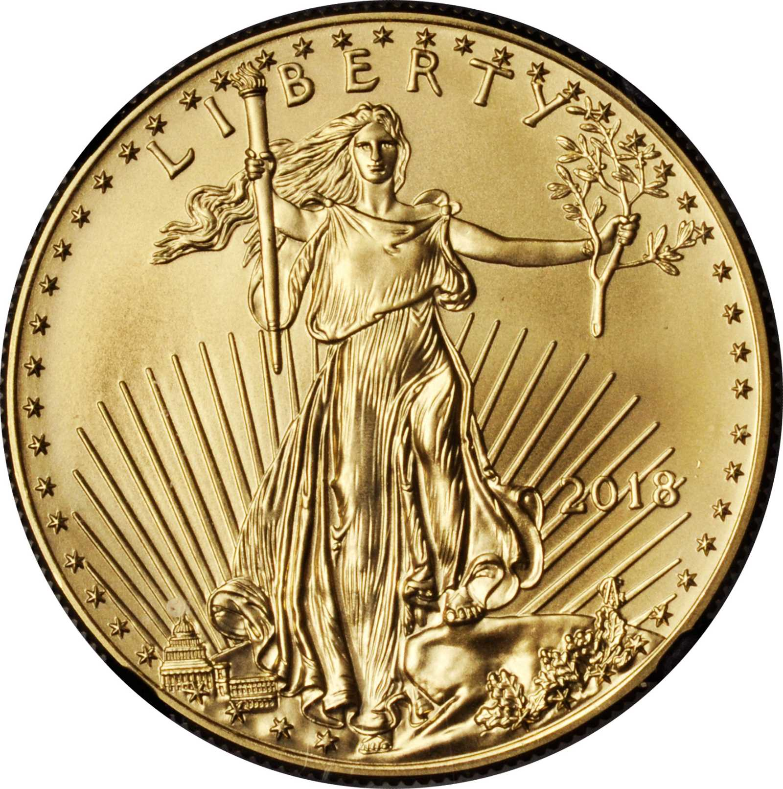sample image for 2018 Gold Eagle $50  MS