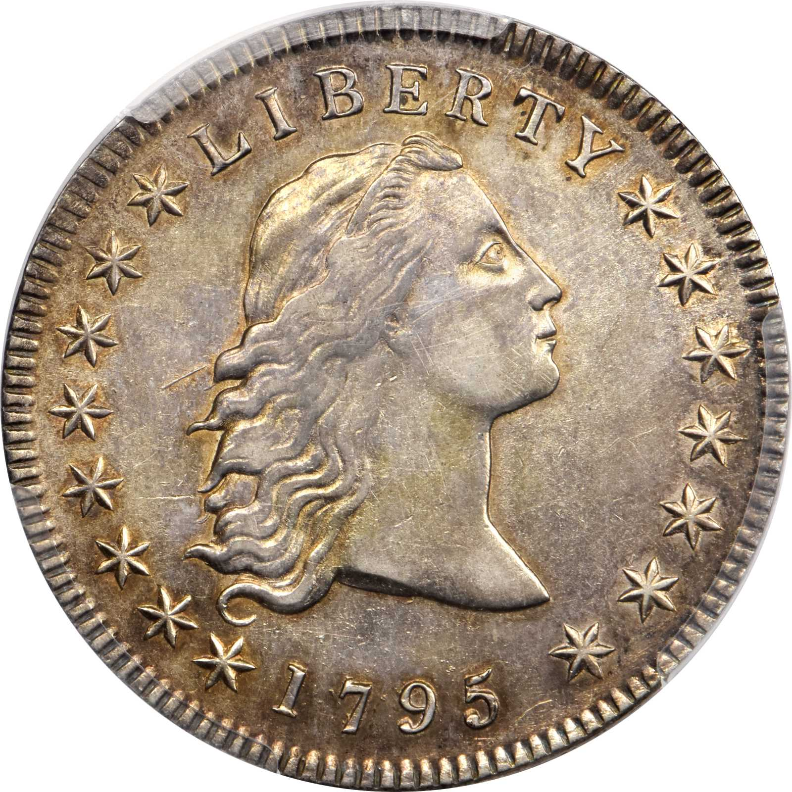 sample image for 1795 Flowing Hair $1  MS 3 Leaves