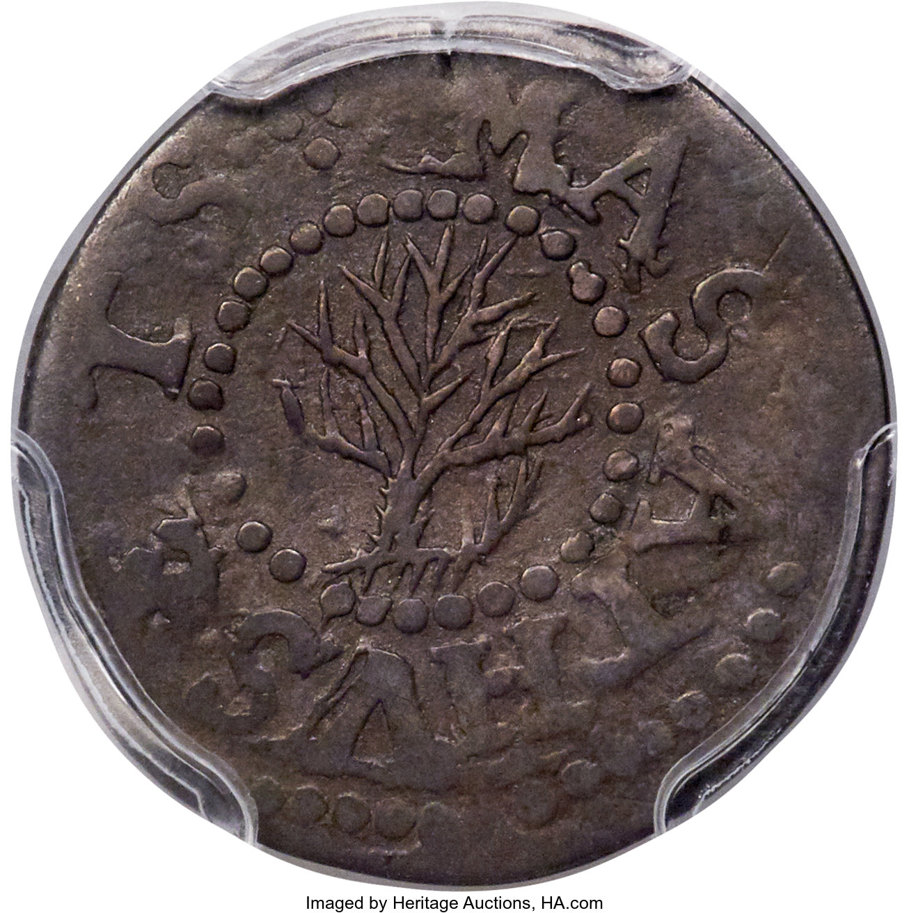 sample image for 1652 Oak Tree 3p
