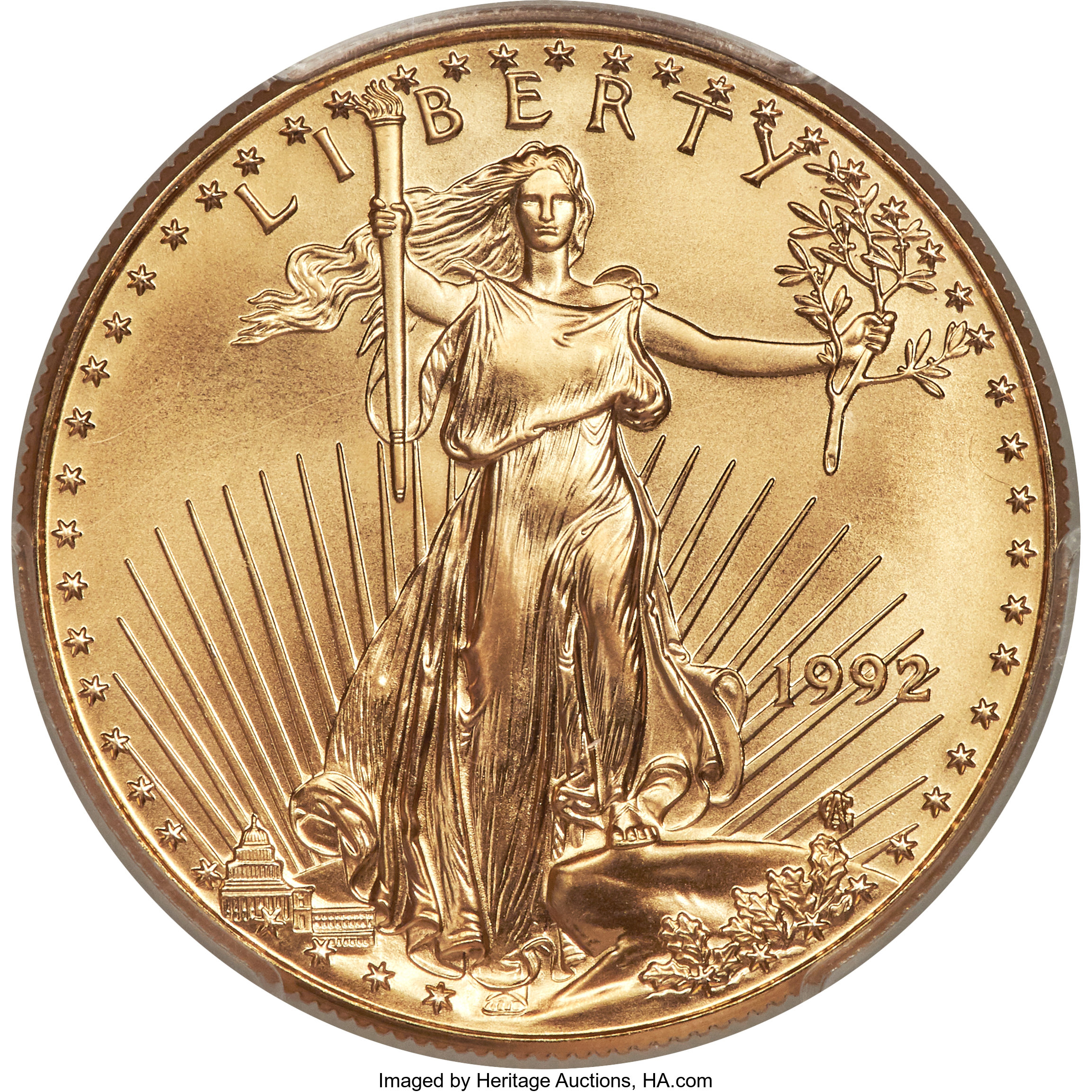 sample image for 1992 Gold Eagle $50  MS