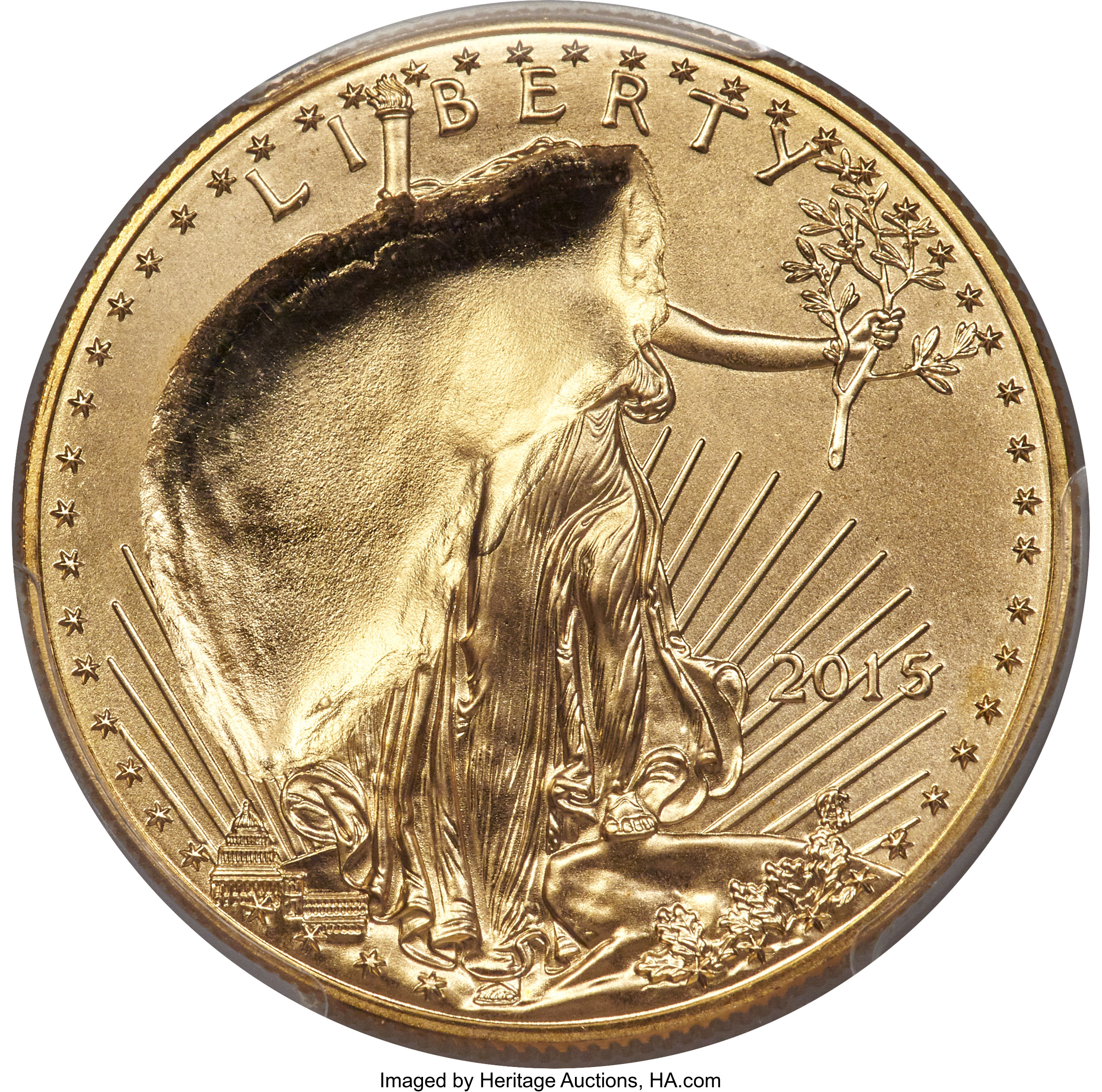 sample image for 2015 Gold Eagle $50  MS
