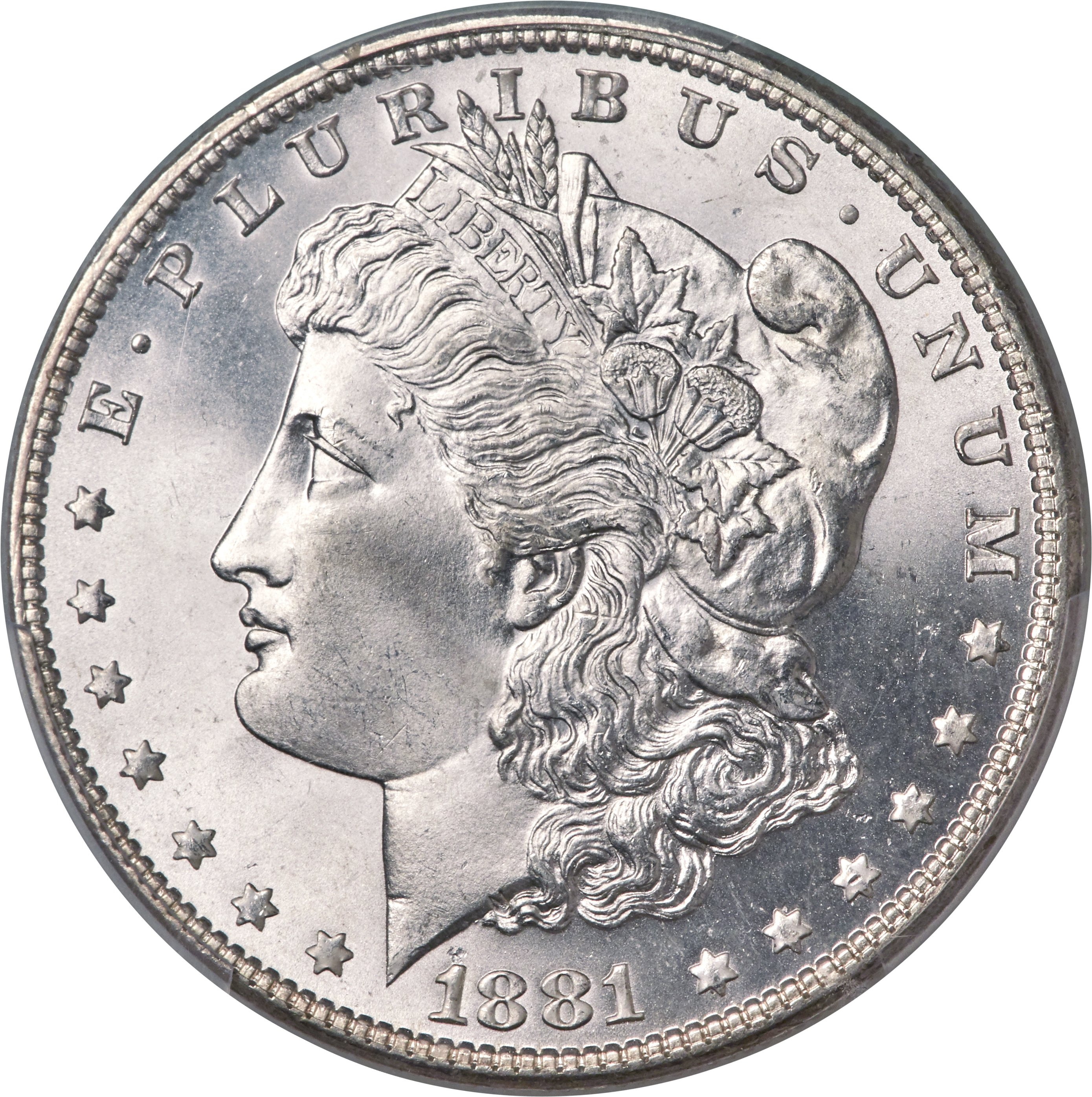 sample image for 1881 $1  MS