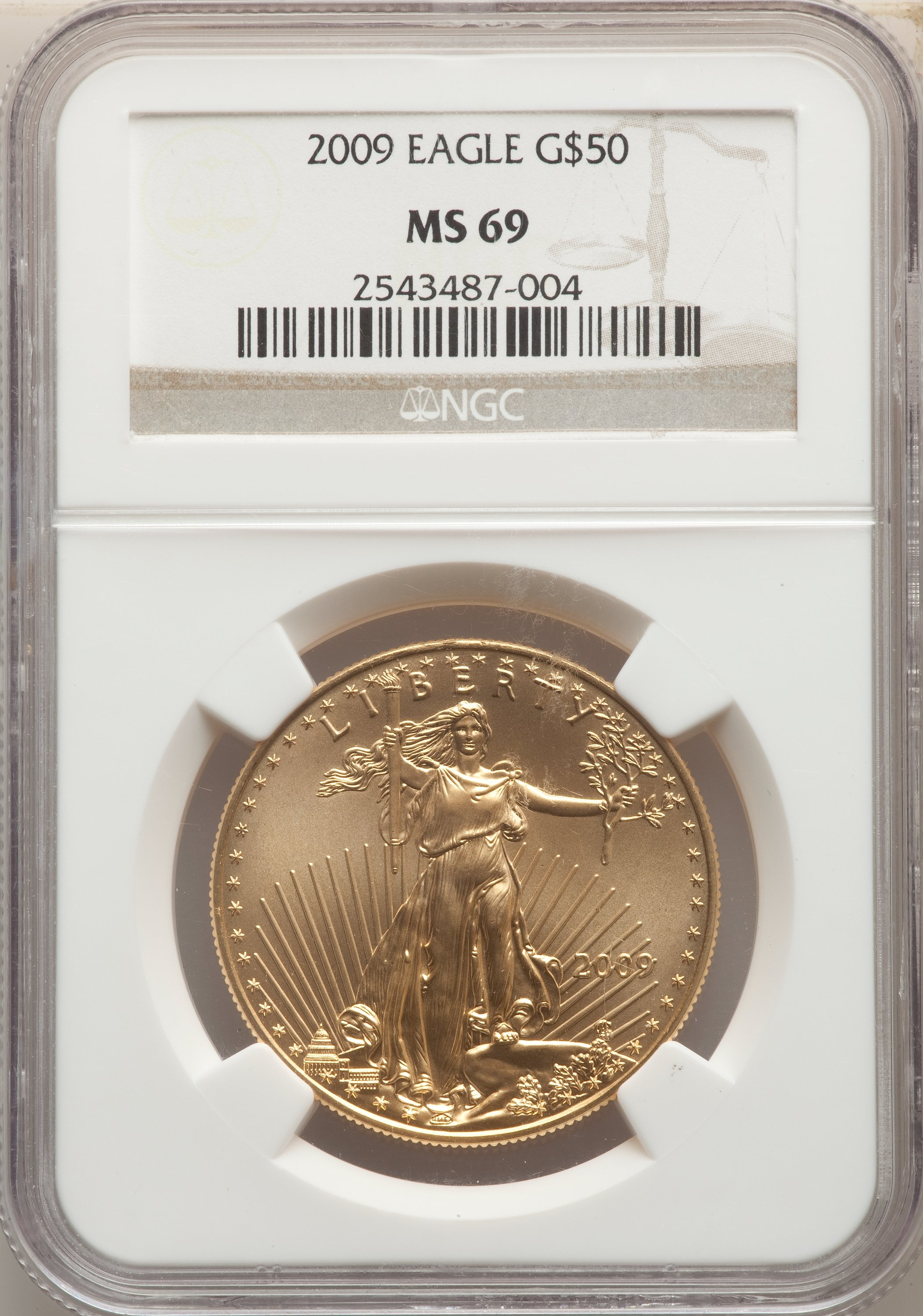 sample image for 2009 Gold Eagle $50  MS
