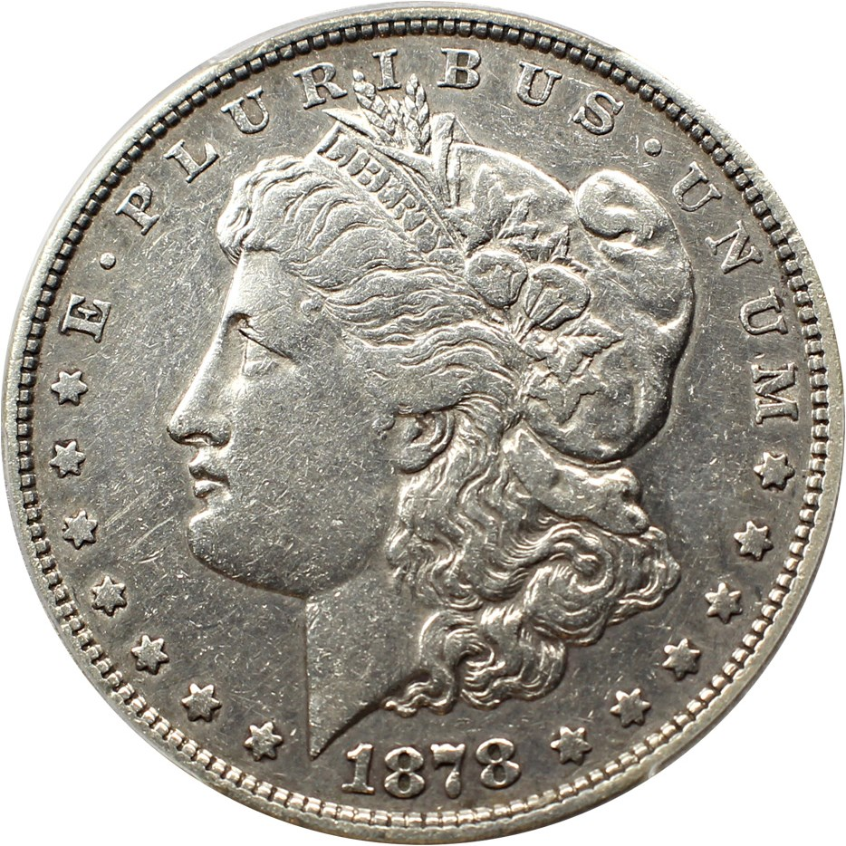 sample image for 1878 8TF $1  MS VAM-14.15, Lines in Hair