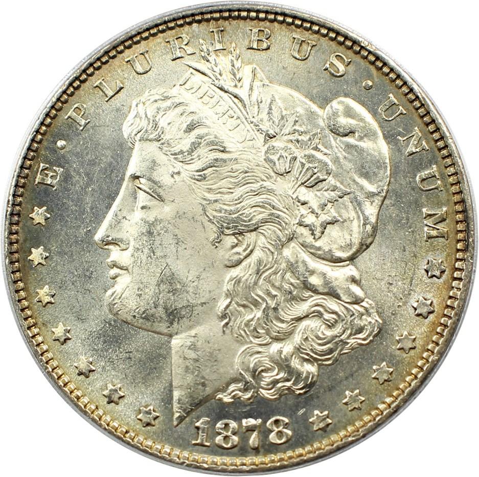 sample image for 1878 8TF $1  MS VAM-14, Chip in Ear