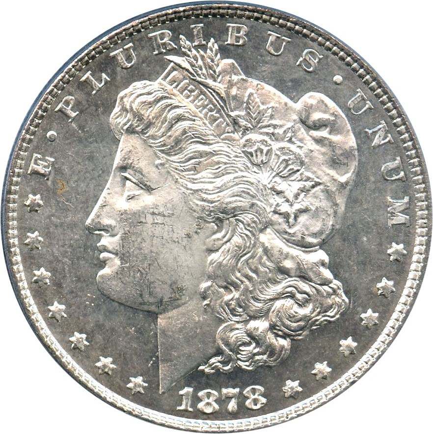 sample image for 1878 8TF $1  MS VAM-19, Doubled Date