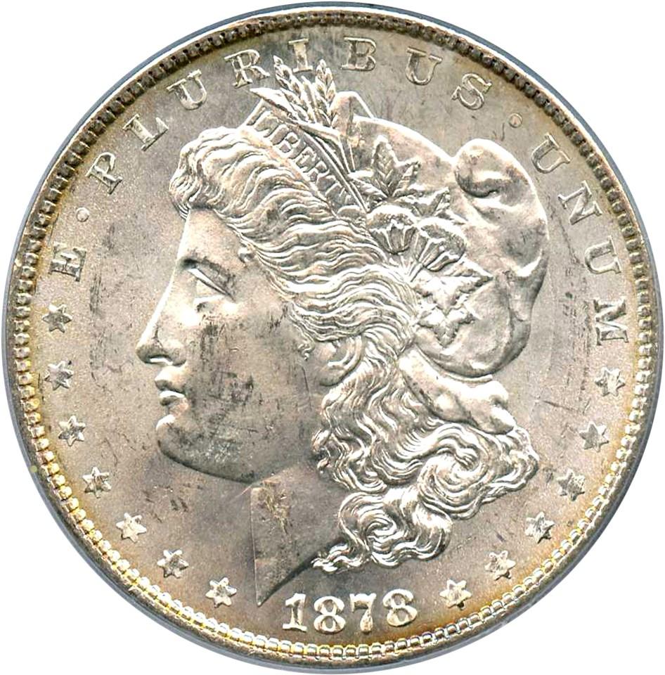 sample image for 1878 8TF $1  MS VAM-14.2, Polished Ear