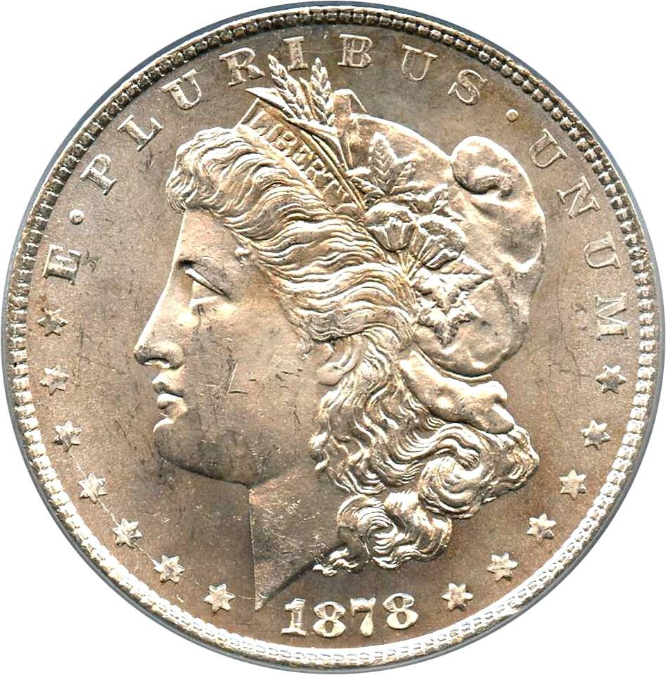 sample image for 1878 8TF $1  MS VAM-22, Polished LIB