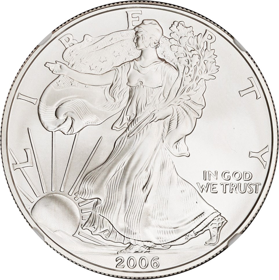 sample image for Silver Eagle Burnished Type [Type]