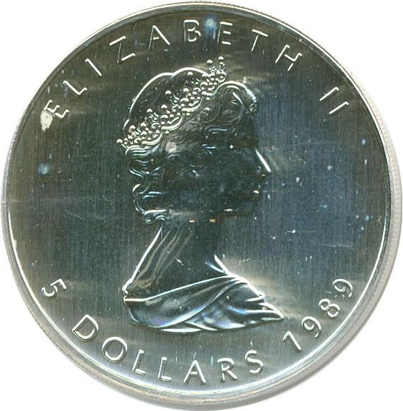 sample image for 1989 Maple Leaf $5  MS