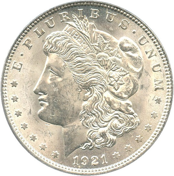 sample image for 1921 Morgan $1  MS VAM-41 Pitted Reverse