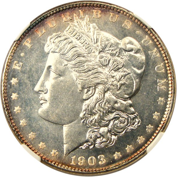 sample image for 1903 $1  MS DMPL