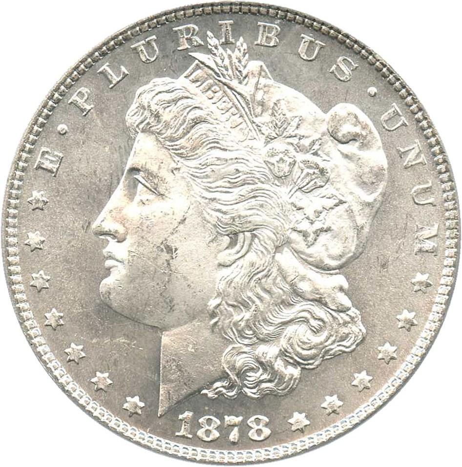 sample image for 1878 7TF Reverse of 1878 $1  MS VAM-81 Polished Ear