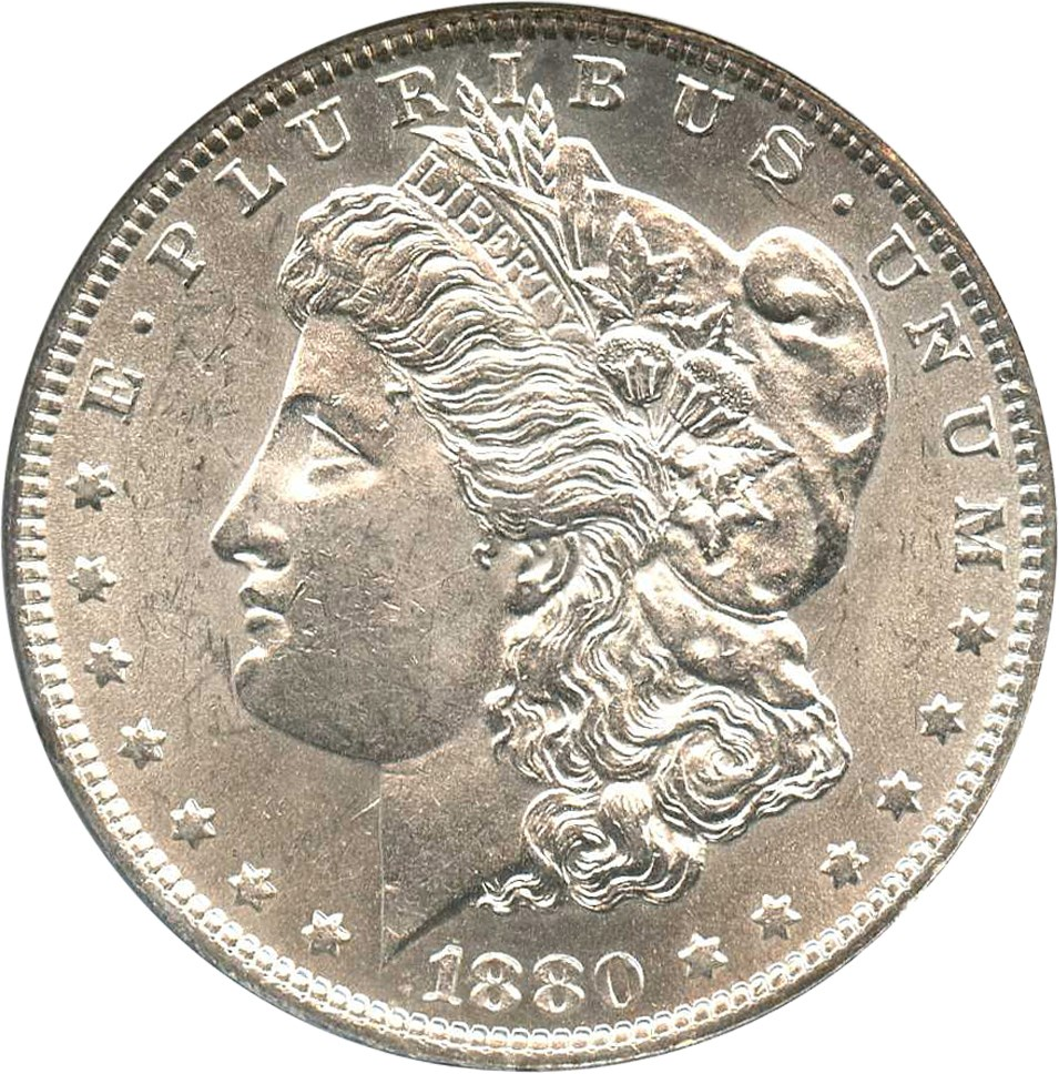 sample image for 1880 $1  MS VAM-6, 8/7 Spikes