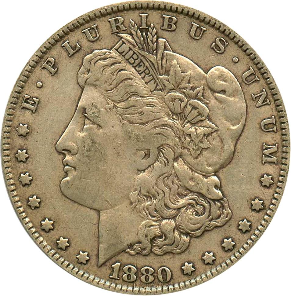 sample image for 1880 $1  MS VAM-1A, Knobbed 8