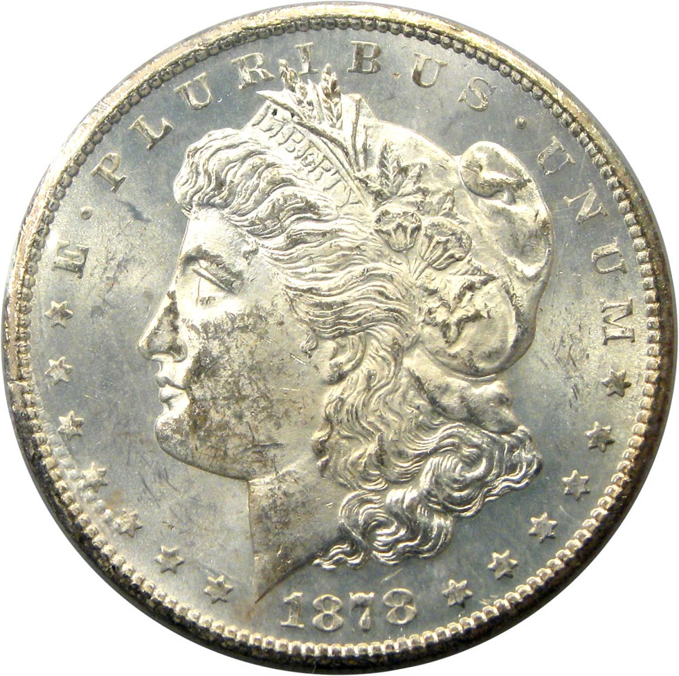 sample image for 1878-CC $1  MS VAM-11, Lines in Wing