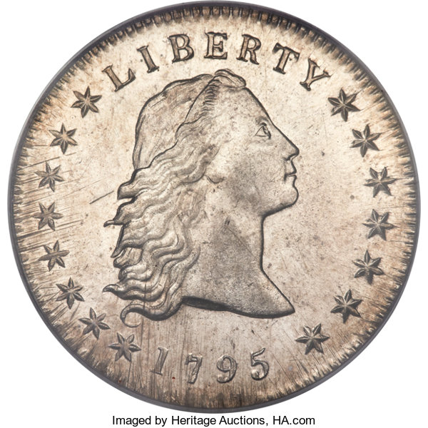 sample image for 1794-1795 Flowing Hair $1  MS [Type]