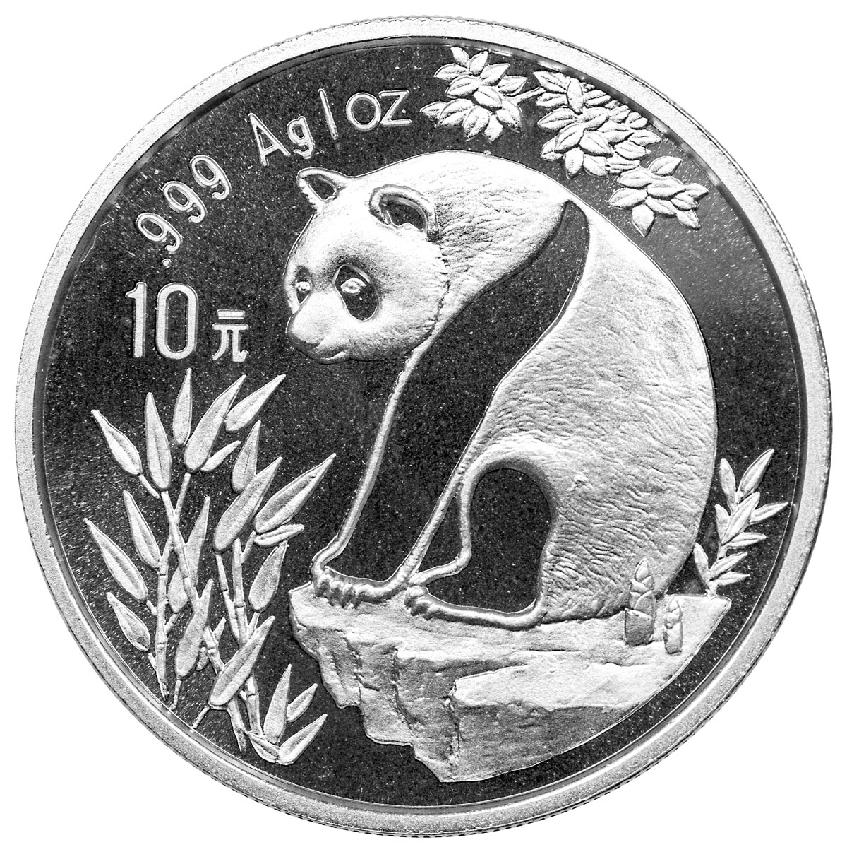 sample image for 1993 10Y MS Panda Small Date