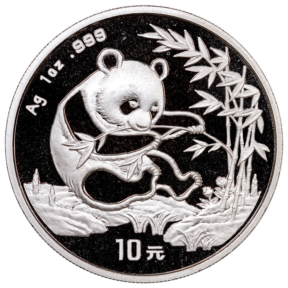 sample image for 1994 10Y MS Panda Small Date