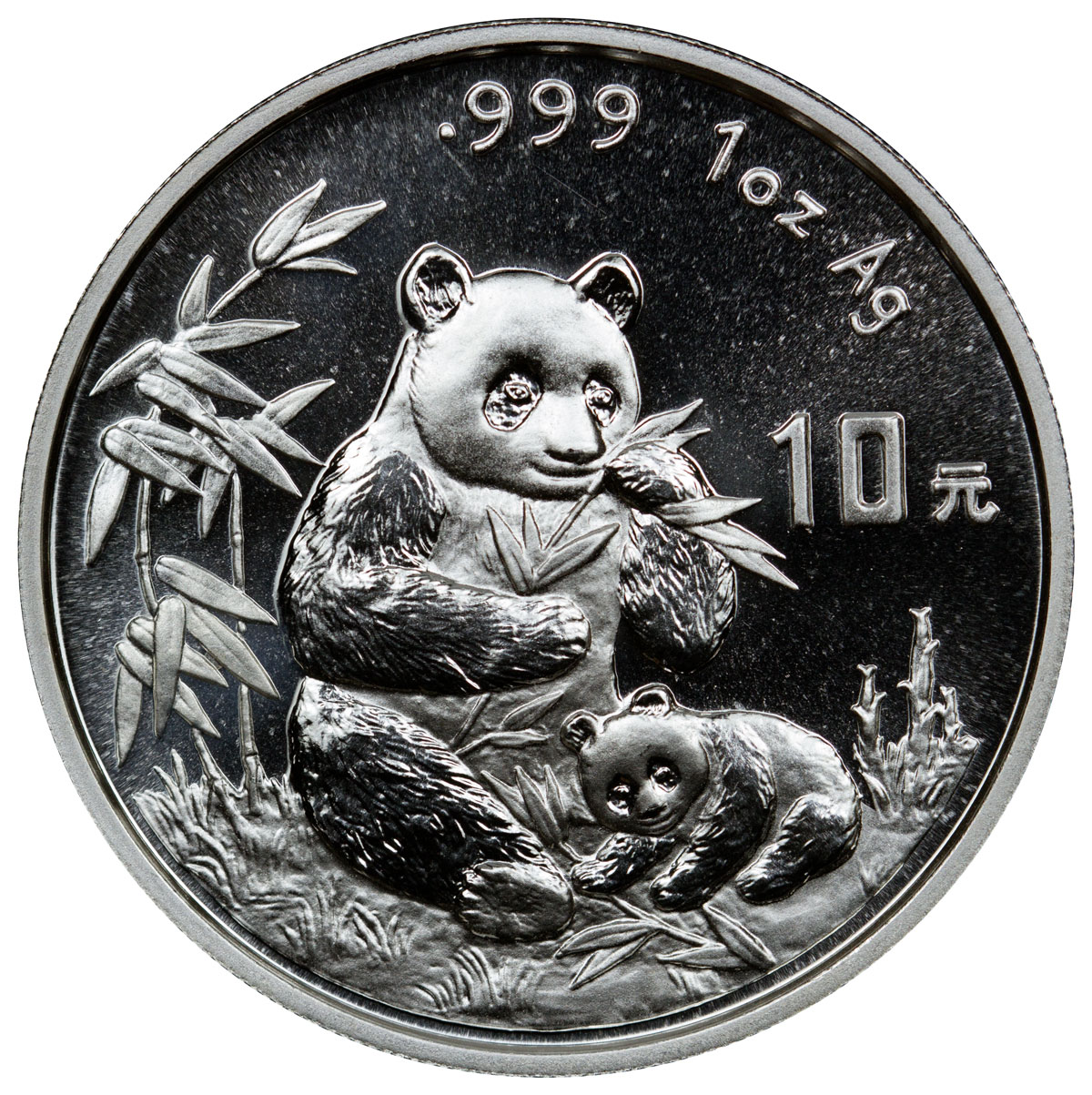 sample image for 1996 10Y MS Panda Small Date