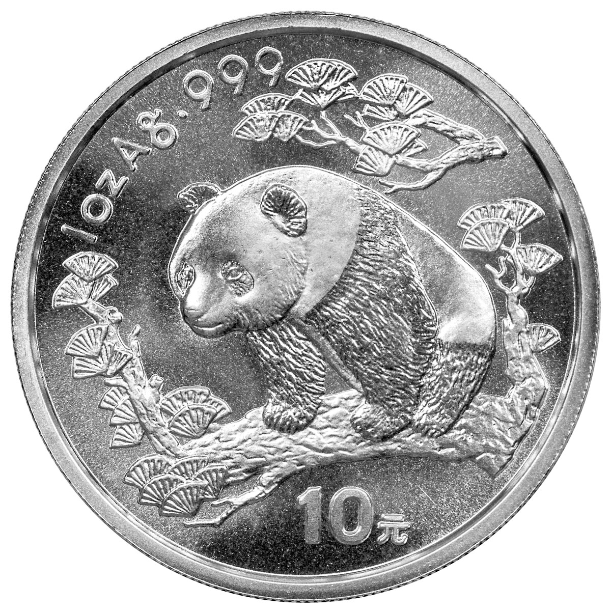 sample image for 1997 10Y MS Panda Small Date