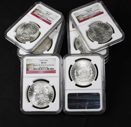 Image of Collector Lot 1902-O $1: All NGC MS64 (10 Coins)