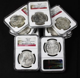 Image of Collector Lot of 1883-O $1: All NGC MS63 (11 Coins)