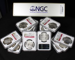 Image of Collector Lot of 1884-O $1: All NGC MS63 (20 Coins)