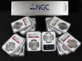 Image of Collector Lot of 1904-O $1: All NGC MS63 (20 Coins)