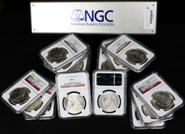 Image of Collector Lot of 1921 Morgan $1: All NGC MS63 (20 Coins)