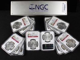 Image of Collector Lot of 1904-O $1: All NGC MS64 (20 Coins)