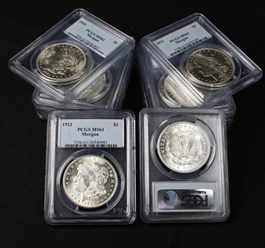 Image of Collector Lot of 1921 Morgan $1: All PCGS MS61 (10 Coins)